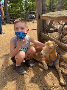 children-can-hug-paint-with-goats-during-join-the-herd-event-this-weekend