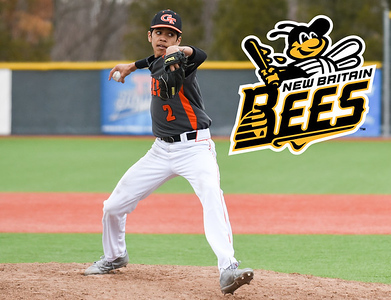 looking-at-new-britain-bees-roster-for-potential-2020-season