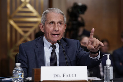 fauci-us-head-in-wrong-direction-on-virus