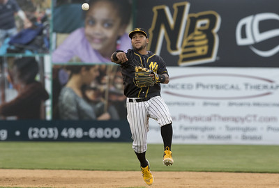 new-britain-bees-looking-to-carry-momentum-from-ducks-series-over-to-games-against-revolution