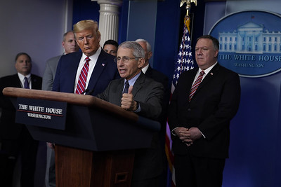 trump-berates-reporter-is-contradicted-by-fauci-over-medicine