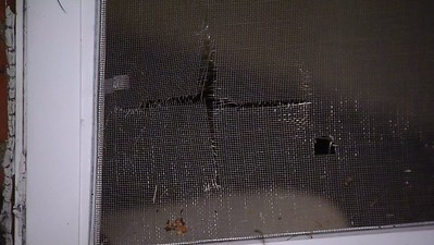 plainville-couple-on-edge-after-person-tried-to-break-into-bedroom-window