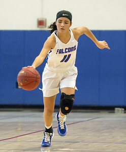 trio-of-st-paul-girls-basketball-players-honored-to-be-recognized-with-nvl-postseason-awards