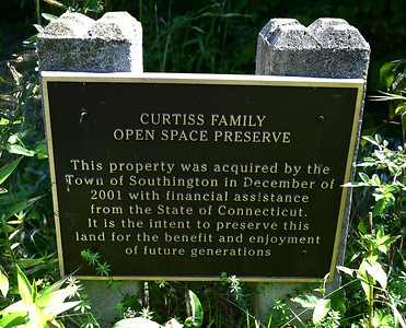 curtiss-pond-once-again-a-good-place-to-fish