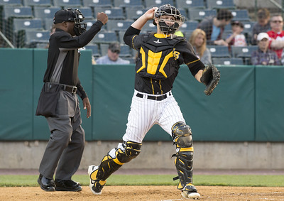 four-new-britain-bees-players-selected-to-atlantic-league-allstar-game