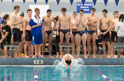 preview-area-boys-swim-teams-have-historic-talent-to-replace-but-still-pushing-for-winning-seasons