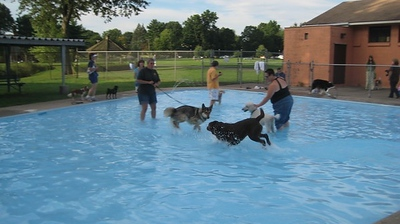 newington-shuts-down-one-of-their-public-pools