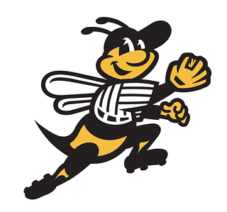 early-buzz-at-bees-hive