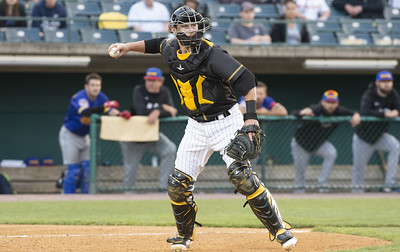 close-loss-stings-new-britain-bees-in-series-finale-against-southern-maryland