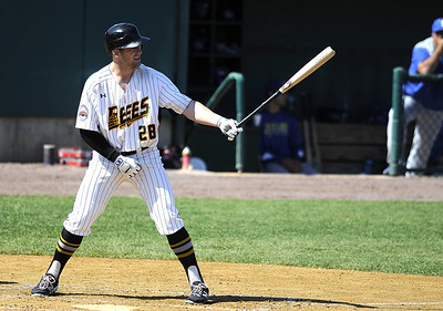 new-britain-bees-wrap-up-season-on-fourgame-winning-streak