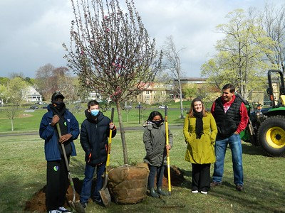new-britains-youth-leadership-council-plants-tree-on-earth-day