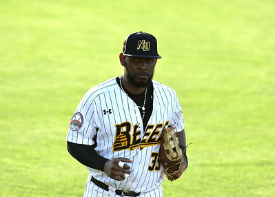 rosa-has-home-run-two-rbi-but-new-britain-bees-lose-to-long-island-ducks