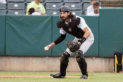 new-britain-bees-sweep-long-island-in-doubleheader-thanks-to-furious-comeback-in-game-two