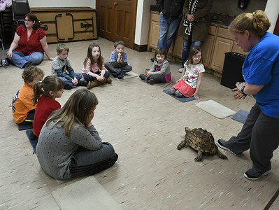 museum-children-throw-valentines-day-party-for-animals