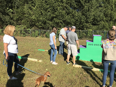 girl-scouts-build-a-staircase-for-southington-dog-park