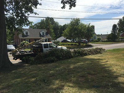 newington-continues-cleanup-from-tropical-storm-town-sets-up-debris-collection