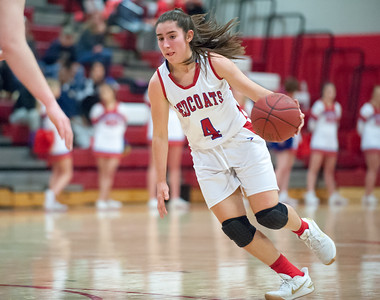 sports-roundup-litwinko-hits-gamewinning-shot-against-windsor-to-send-berlin-girls-basketball-to-second-round-of-ccc-tournament