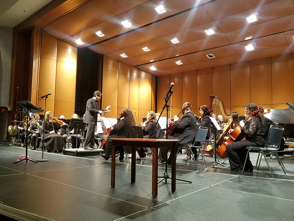 Karla Santos   Staff New Britain Symphony Orchestra under the leadership of guest conductor Netta Hadari at the 22nd annual Young People Concert.