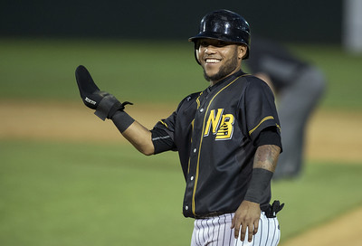 york-revolution-romp-over-new-britain-bees-to-complete-threegame-sweep
