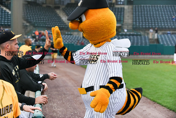042717 Wesley Bunnell | Staff The New Britain Bees vs the Lancaster Barnstormers played on Thursday evening. Bees mascot Sting high fives Eric Fornataro (23) after riding in from the visitors bullpen on the Dattco Bus.