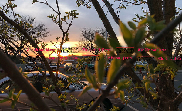 4/11/2017 Mike Orazzi | Staff Sunset on Main Street in Bristol as new buds form leaves after a couple of warm days and some sunshine.
