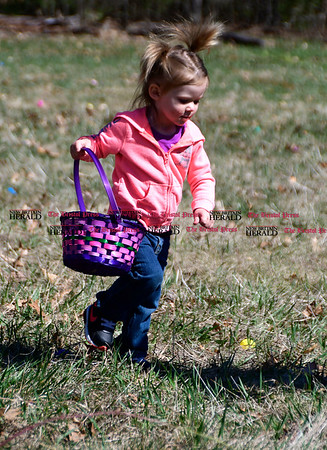 4/14/2017 Mike Orazzi | Staff Madison Lowell, 2 in a few weeks, searches for plastic eggs during the Barnes Memorial Nature Center's Annual Easter Egg Hunt on Friday in Bristol.