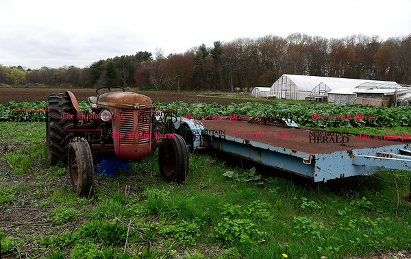 4/27/2017 Mike Orazzi | Staff Zarrella Farms in Plainville.