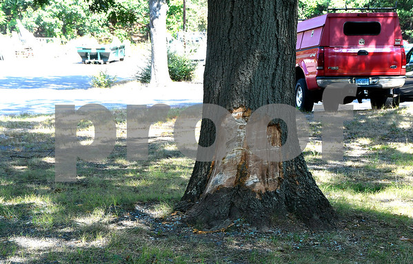 8/31/2017 Mike Orazzi | Staff A car crash into tree, one person in critical condition on Johnson Avenue in Plainville early Thursday morning.