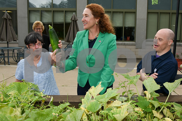 080817 Wesley Bunnell | Staff Congresswoman Elizabeth Esty toured CCARC in New Britain on Tuesday afternoon speaking to workers and clients. CCARC provides services to support adults with intellectual disabilities and their families. Congresswoman Esty picks a zucchini from the garden with Maria Duval, L, and Keith Font.