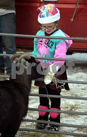 12/16/2017 Mike Orazzi | Staff Serena Croce,6, feeds a goat during the petting zoo at Rockwell Park Saturday for Bristol's &quote;Santa Land Village.&quote;
