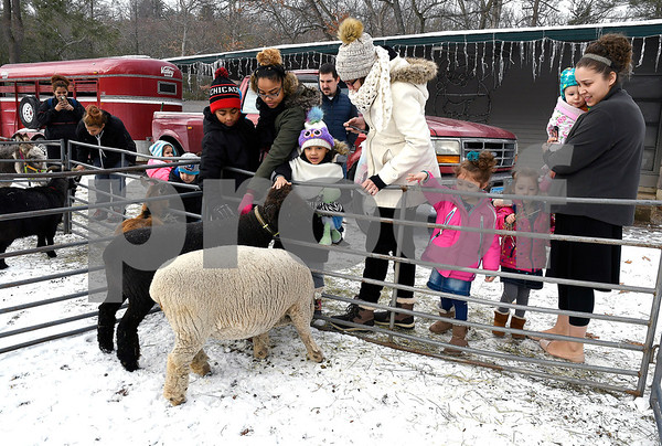12/16/2017 Mike Orazzi | Staff Animals from Circle K Farm during the petting zoo at Rockwell Park Saturday for Bristol's &quote;Santa Land Village.&quote;