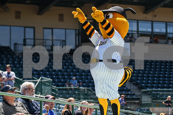 051617 Wesley Bunnell | Staff The New Britain Bees vs the Bridgeport Bluefish in the 2nd game of a double header played early afternoon on Tuesday. New Britain's mascot Sting stands on top of the New Britain dugout.