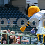 051617  Wesley Bunnell | Staff  The New Britain Bees vs the Bridgeport Bluefish in the 2nd game of a double header played early afternoon on Tuesday. New Britain's mascot Sting stands on top ...