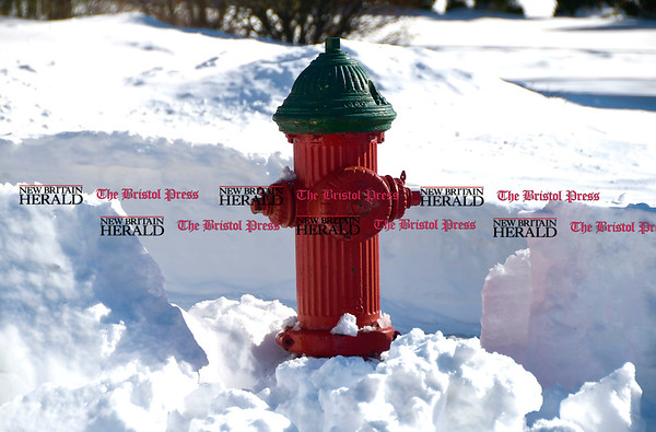 3/16/2017 Mike Orazzi | Staff A cleared fire hydrant on Ivy Drive in Bristol Thursday afternoon.