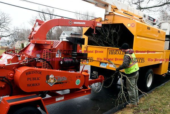 3/7/2017 Mike Orazzi   Staff Bristol Public Works employees clean up a fallen tree limb at the intersection of Cypress Street and Burlington Road Tuesday afternoon.