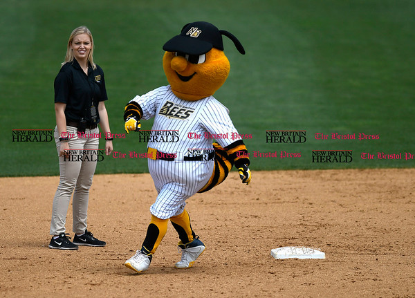 5/27/2017 Mike Orazzi | Staff The New Britain Bees' mascot during Saturday's game with the Southern Maryland Blue Crabs.