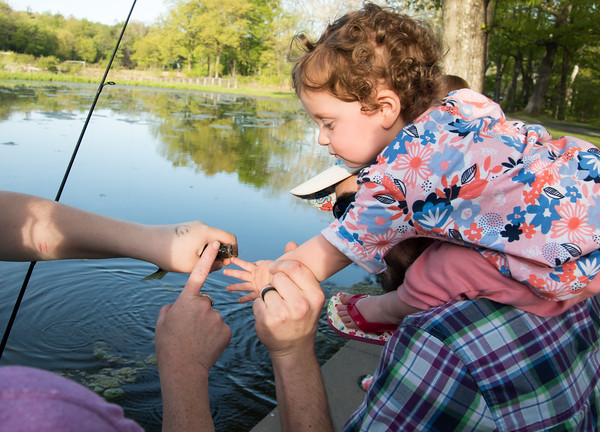 05/14/18 Wesley Bunnell | Staff Michael Calo holds his daughter Cassidy, 16 months, on his shoulders as she touches a fish for the first time at Rockwell Park on Monday night.