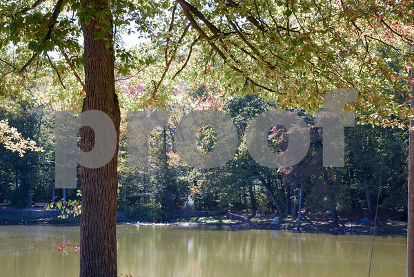 10/02/17 Wesley Bunnell   Staff Foliage is starting to change colors around Page Park Lagoon on Monday October 2nd.