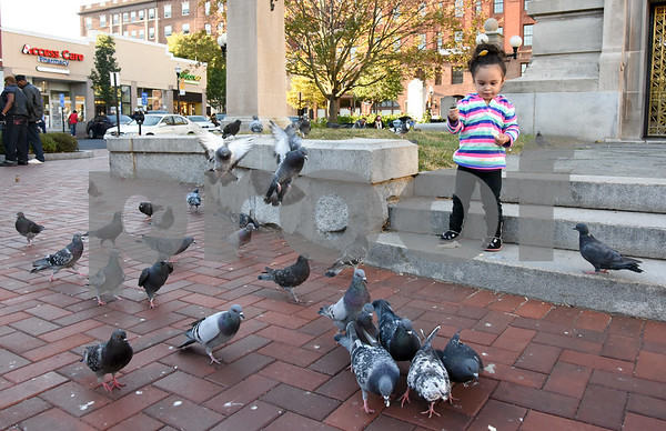 10/02/17 Wesley Bunnell   Staff Pigeons flock around Penelope Navarro, age 2, as she throws small pieces of bread to them in Central Park on Monday afternoon.