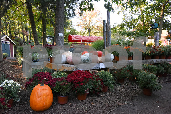 10/02/17 Wesley Bunnell   Staff Unusual decorate pumpkins at Karabin Farm in Southington on Monday afternoon.