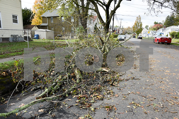 10/30/17 Wesley Bunnell   Staff High winds and heavy rain on Sunday and into Monday morning caused trees to fall and disrupt services to city residents. A tree lies to the side near the intersection of Chapman & Linden St.
