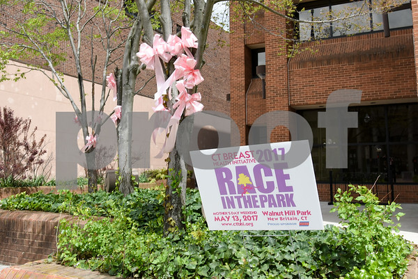 050817 Wesley Bunnell | Staff Pink ribbons and signs are popping up around New Britain for the CT Breast Initiative 2017 Race In The Park which is taking place Saturday May 13. Ribbons appear outside the CCSU ITBD building.