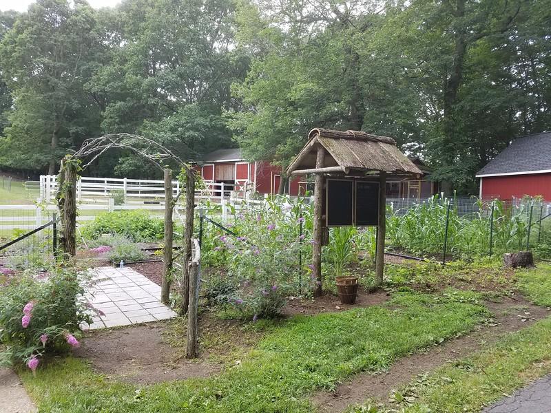 Gardening-br-101217::1