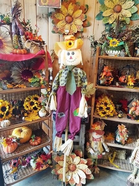 scarecrow-ntc-091517