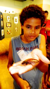 leathery-creatures-on-display-for-fathers-day-at-nature-center