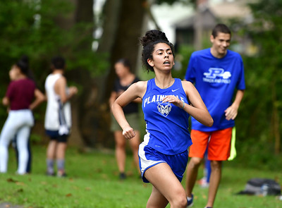 rockwell-park-hill-challenges-plainville-boys-girls-cross-country