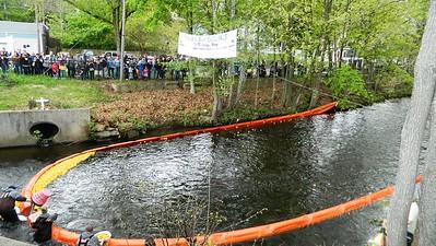 annual-pequabuck-river-duck-race-winners