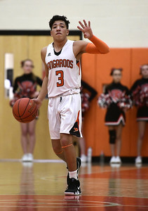 roundup-molinas-shooting-daos-clutch-jumper-lead-terryville-boys-basketball-to-upset-win-in-state-tournament