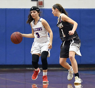 st-paul-girls-basketball-defeated-in-second-round-of-class-m-state-tournament