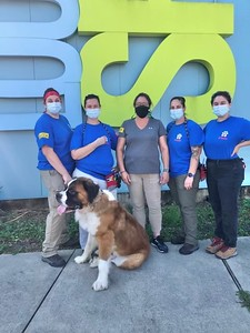 ct-humane-team-aids-in-new-orleans-hurricane-relief-efforts